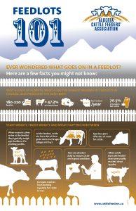Feedlots 101 - Alberta Cattle Feeders Association